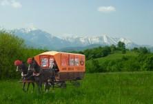 Aris Bulls ви канят на десет дневен преход с дилижанси и конна езда