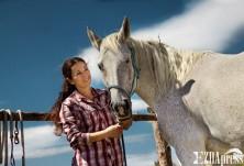 Кой и как предлага терапия с помощта на коне?