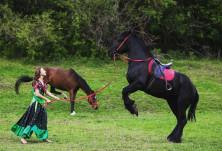 """""""Празник на коня"""" в Перник събира на едно място коне, жокеи и каубои"""