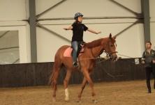 Курс за инструктори по конен спорт